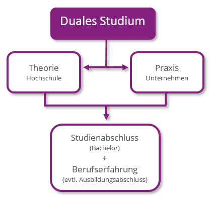 duales studium marketing marketing